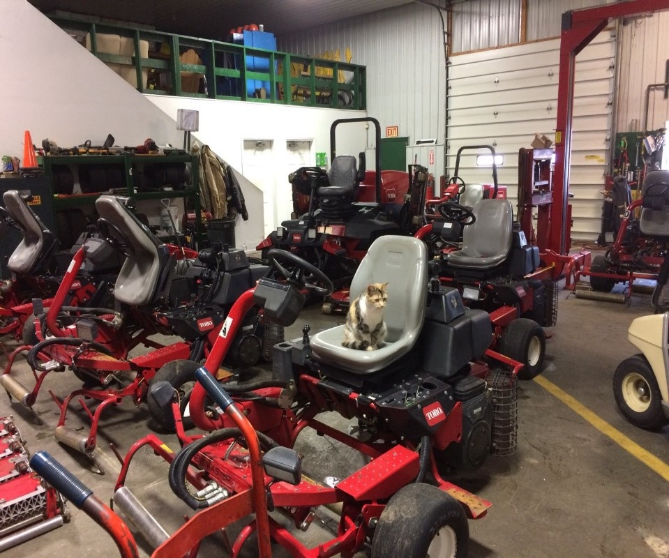 Bucks Run Golf Club Mowers Equipment